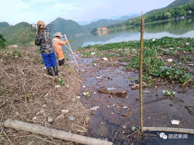 拿口镇:全力开展水葫芦清理专项行动